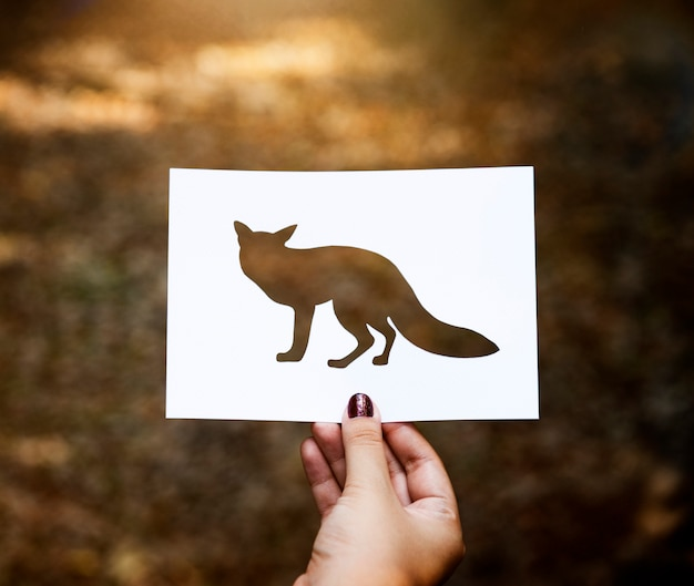 Cut out of a fox