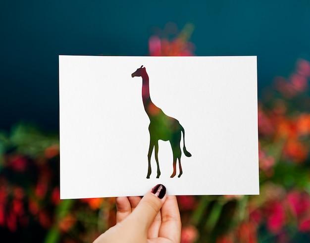 Cut out of a giraffe