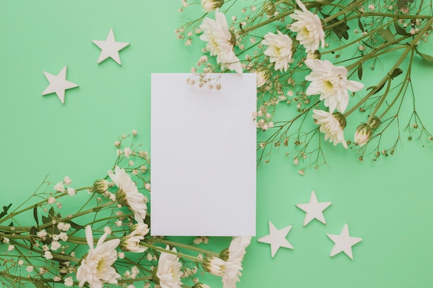 Cut out white stars with blank card and flower decoration on green backdrop