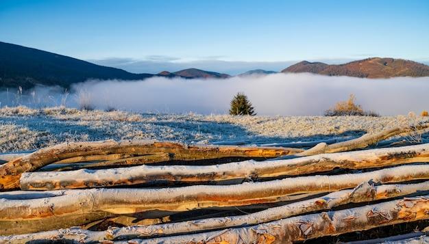 霜が降りる早朝の寒い時期には、家の暖房に使われる伐採木が凍った地面に横たわっています。