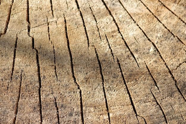 Вырезать дерево с потрескавшимся старым деревянным фоном
