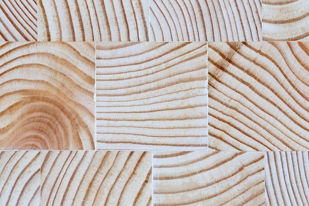 The cut wood with the texture and growth rings