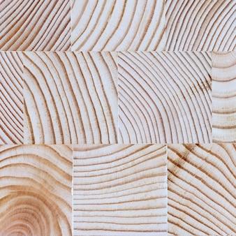 The cut wood with the texture and growth rings.