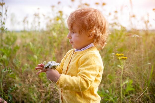 黄色いセーターを着たかわいい愛らしい子供の幼児が畑の花を調べます。