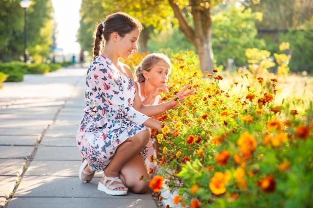 Милые очаровательные девушки в нежных розовых платьях нюхают чудесные огненные ноготки в ярком летнем парке в солнечный день на долгожданном отпуске