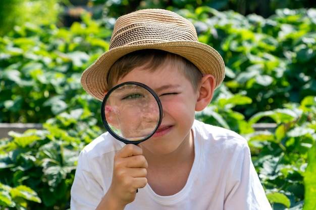 Cute adorable little child boy in straw hat with magnifying glass watching or looking for. kid conducts investigation, undergoes quest. little detective.