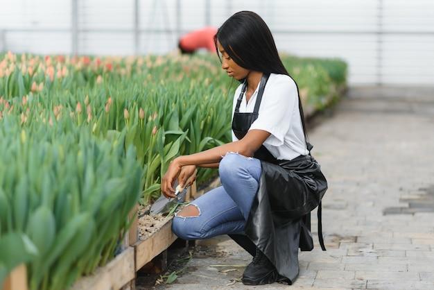 온실에서 꽃 상태를 확인하는 귀여운 아프리카 여성 플로리스트