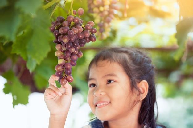 かわいいアジアの子供の女の子が確認し、ブドウ畑で赤い葡萄の束を収穫