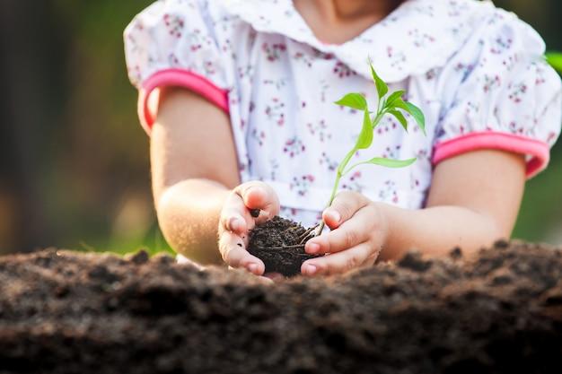 Милая азиатская девушка ребенка держа молодое дерево для засаживать в черной почве в саде с потехой