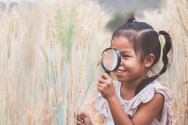 Cute asian child girl looking the ears of wheat through a magnifying glass in the barley field