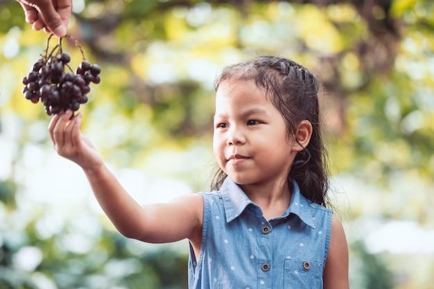 かわいいアジアの子供の女の子が赤いぶどうを摘んで、彼女の親からぶどう園で収穫