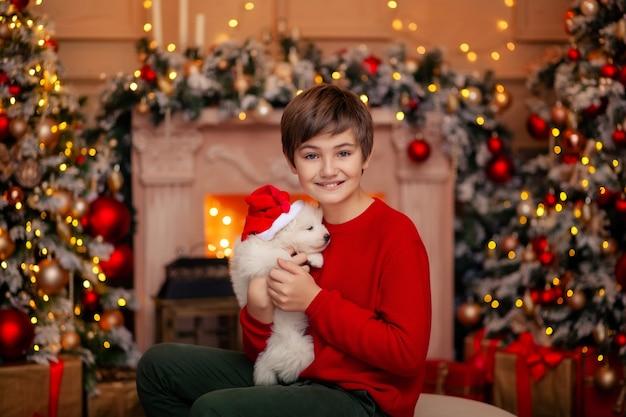 메리 크리스마스를 기다리는 강아지와 함께 크리스마스 트리에서 귀여운 아기