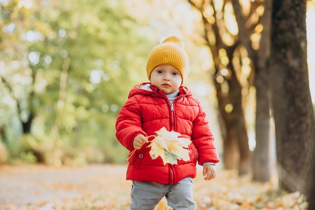 秋の公園で赤いジャケットのかわいい男の子