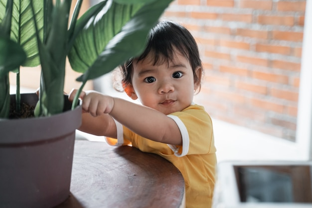 Cute baby stares while holding the pot on the table in the house