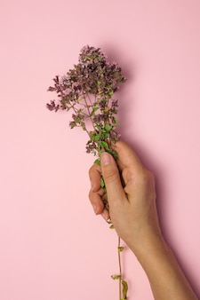 Cute bouquet of small flowers in a female hand on a pink background