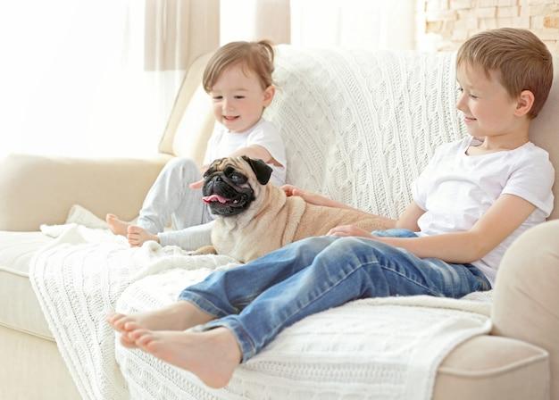 Милый мальчик и девочка с мопсом на диване
