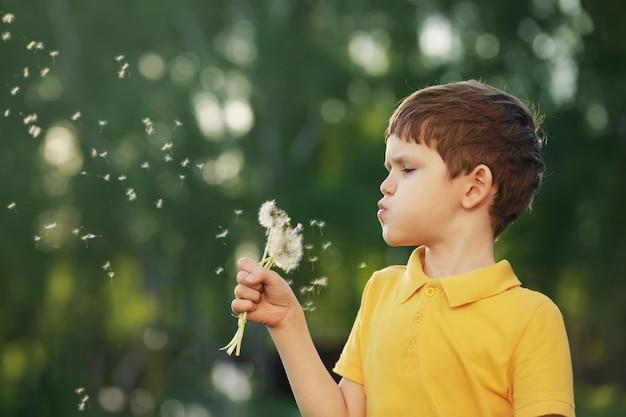 Cute boy blowing dandelion on outdoors.