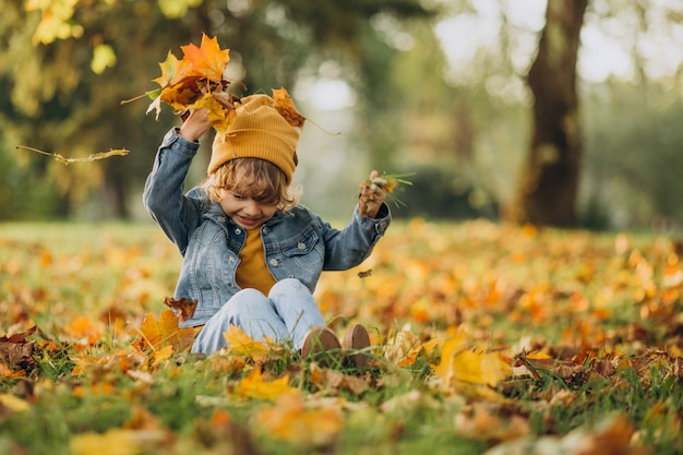 Cute boy playing with leaves in autumn park