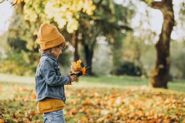 Милый мальчик играет с листьями в осеннем парке