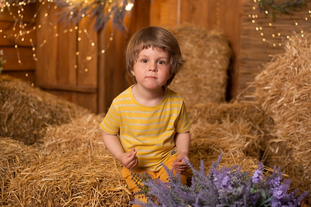 Cute boy sitting in straw sheaves in farm, countryside, farming