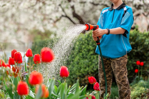 Cute boy watering plants from the hose, makes a rain in the garden. child helping parents to grow flowers.