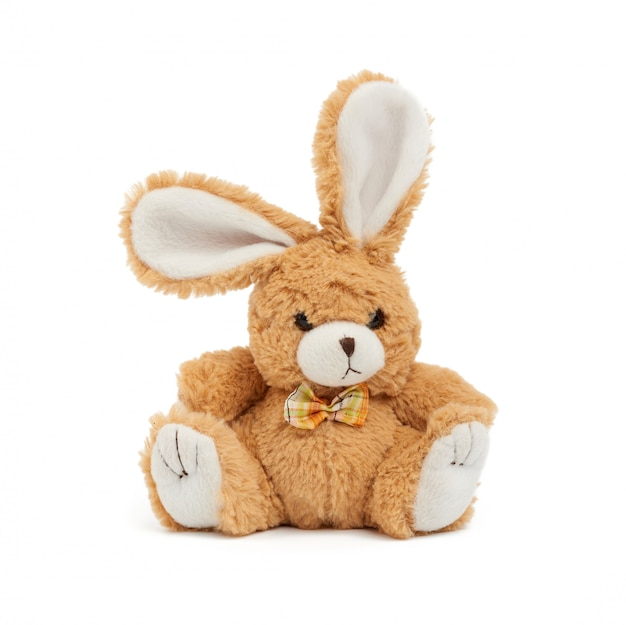 흰색 바탕에 귀여운 갈색 토끼 프리미엄 사진