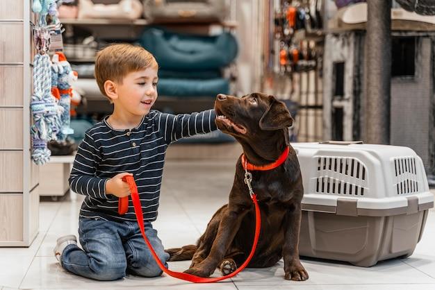 Милая коричневая собака в зоомагазине