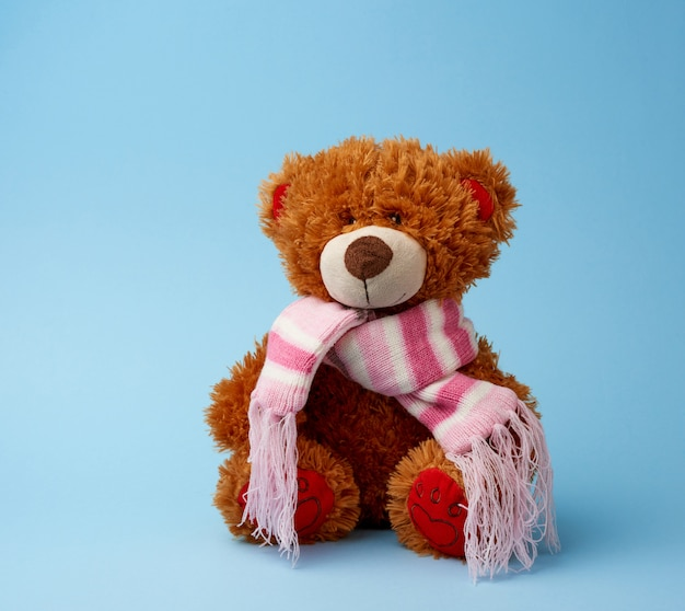 Cute brown fluffy teddy bear in a colored scarf sits