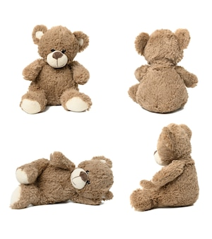 Cute brown teddy bear against white isolated background in different poses. set