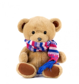Cute brown teddy bear in a colored knitted scarf sitting on a white background