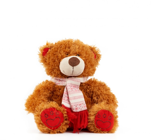 Cute brown teddy bear in a colored knitted scarf sitting