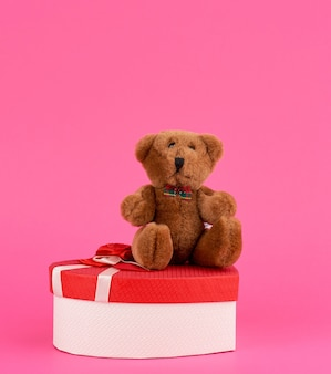 Cute brown teddy bear and red gift box on a pink background