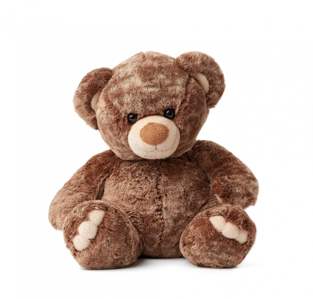 Cute brown teddy bear sits on a white isolated background