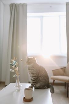 Милый кот и ваза с цветами на столе в уютном домашнем интерьере
