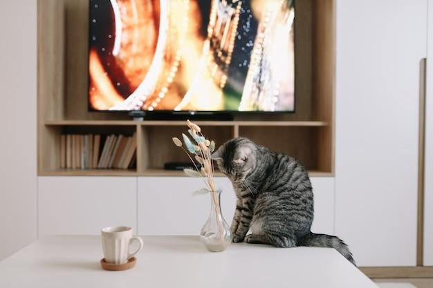 居心地の良い家のインテリアのテーブルの上に花とかわいい猫と花瓶