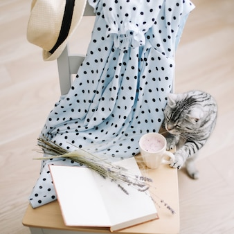 A cute cat book fresh smoothie drink and a book