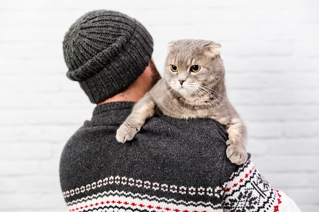 Cute cat held by owner