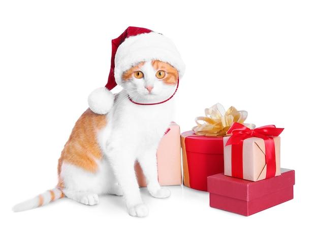 Милый кот в шляпе санта-клауса и фоне подарочных коробок