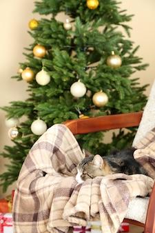 Милый кот на кресле-качалке перед камином