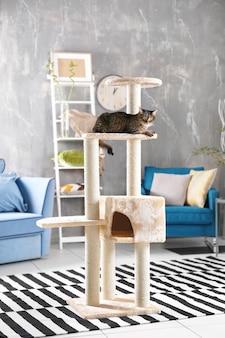 Милый кот сидит на дереве в современной комнате