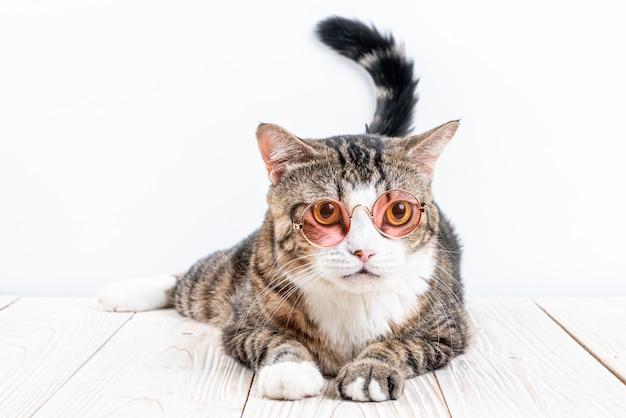 Милый кот в очках