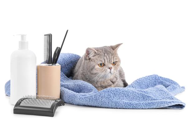 Милый кот с полотенцем и инструментами для ухода за шерстью изолированы