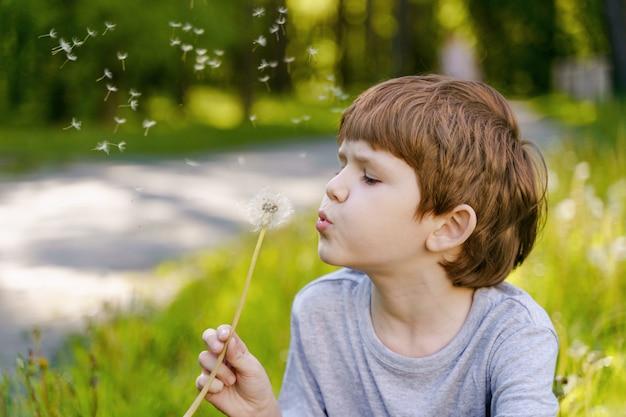 Cute child  blowing dandelion.