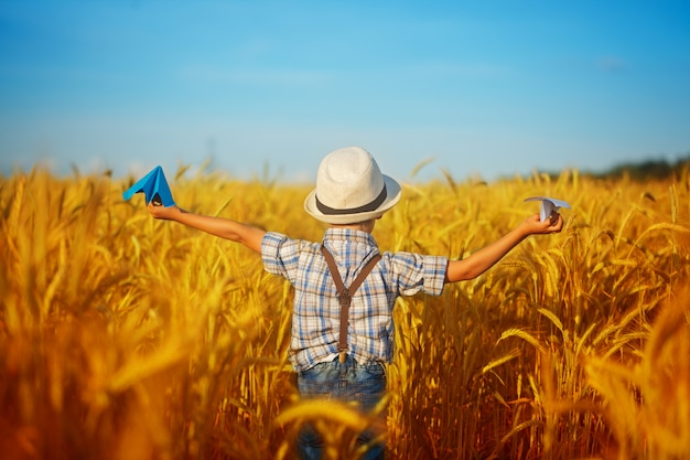 Cute child walking in the wheat golden field on a sunny summer day. boy starts paper plane. nature in the country.back view.