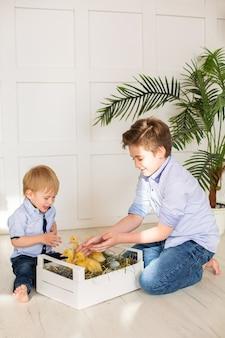 アヒルと遊ぶかわいい子供たちの男の子の兄弟