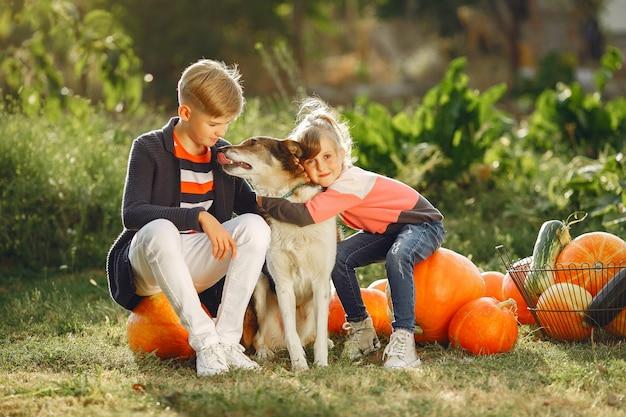 Симпатичные childresn, сидя на огороде возле многих тыкв