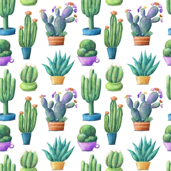 Cute colorful cactus in pots, seamless pattern on white background