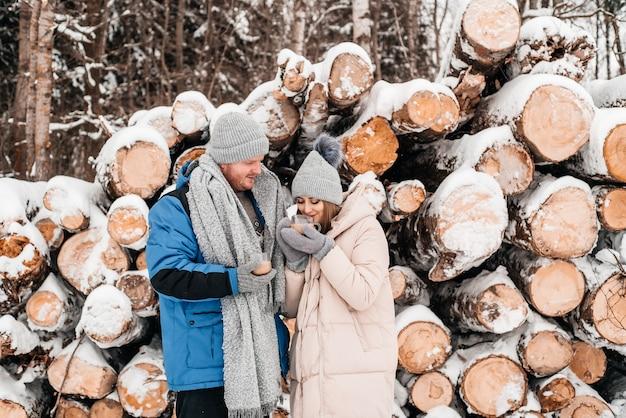 丸太、冬の森に座っている愛のかわいいカップル。アートワーク。