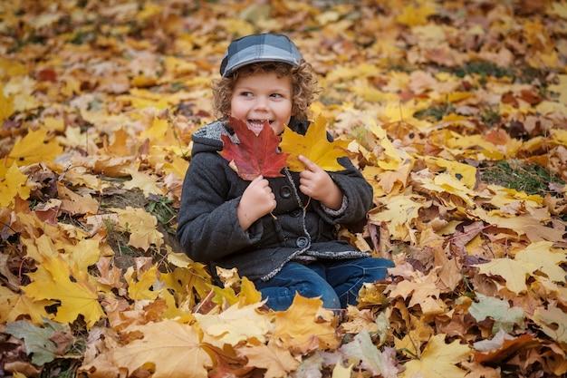 노란색 단풍에 앉아 귀여운 곱슬 머리 소년 공원에서 가을 단풍