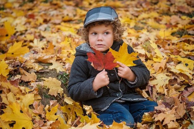 노란색 단풍에 앉아 귀여운 곱슬 머리 소년 공원에서 가을 단풍 프리미엄 사진